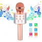 Wireless Karaoke Microphone Toy