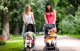 10 Best Umbrella Strollers Reviewed in 2020