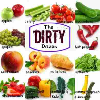dirty-dozen-organic-blog-page