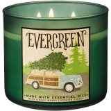 Bath and Body Works Evergreen