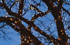 10 Best Christmas Lights Reviewed in 2020