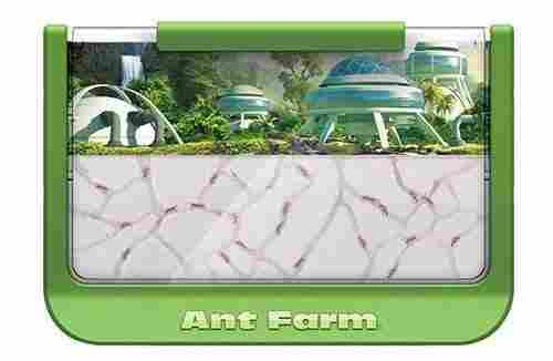kids ant farm kit