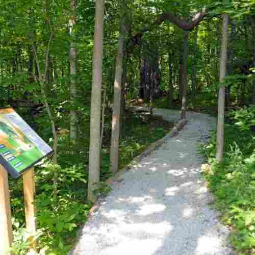 nature-walk-earth-day-blog-page