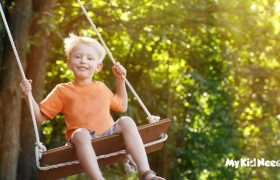 10 Best Ropes for a Tree Swing