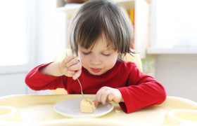 10 Best Kids' Plates & Dishes Reviewed in 2020