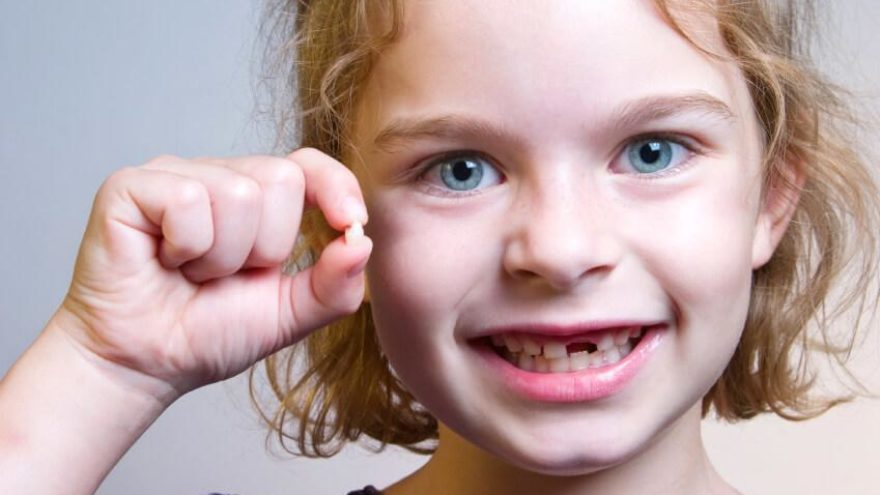 The Remarkable Process of Losing Baby Teeth
