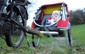 10 Best Bike Trailers for Kids and Babies Reviewed in 2020